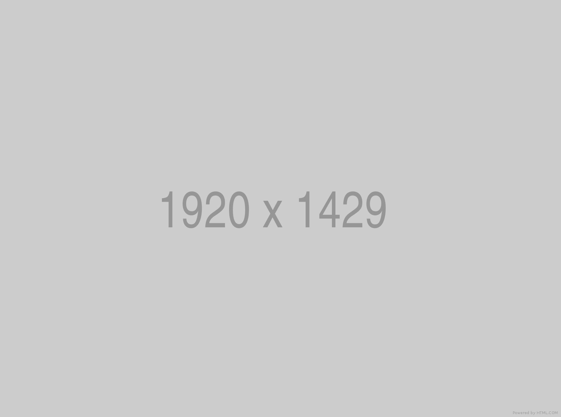 exhibition img 1.8